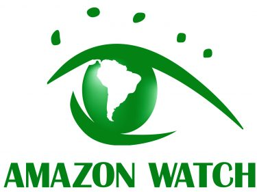 Bitpay rejected a donation of $100,000 in Bitcoin (BTC) to Amazon Rainforest Charity
