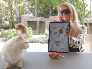 Paris Hilton auctions her cat's portrait as an NFT token on the Ethereum blockchain