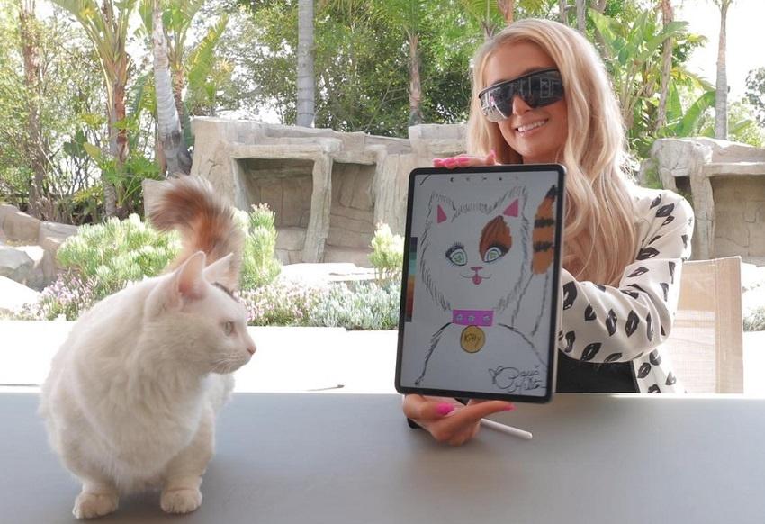 Paris Hilton auctions her cat