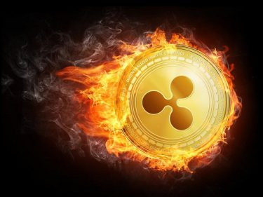 Ripple could burn its 48 billion XRP tokens says CTO David Schwartz