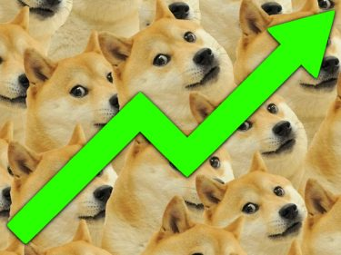 The DOGE price (Dogecoin) reaches $0.30 and passes LINK, UniSwap and Litecoin LTC on Coinmarketcap!